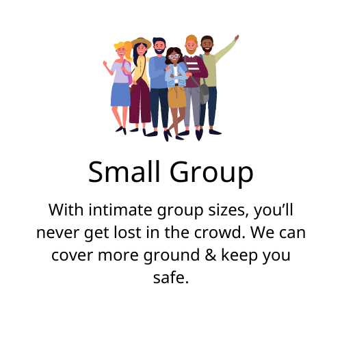Small group tours only
